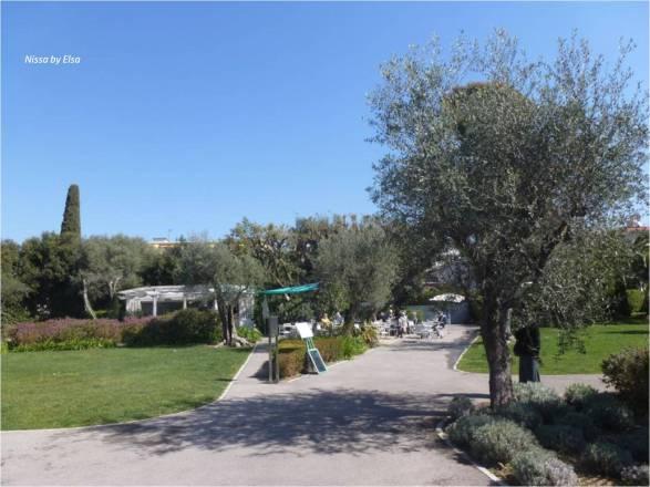 Musee Chagall jardin